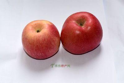 承德国光苹果
