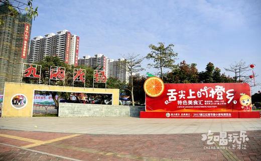 锣鼓声声响,舞狮笑开颜,2017年廉江红橙节博览会正式开幕