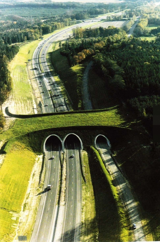 世上最美的桥你看过几座,英国的气球桥也着实让我大开眼界(4)