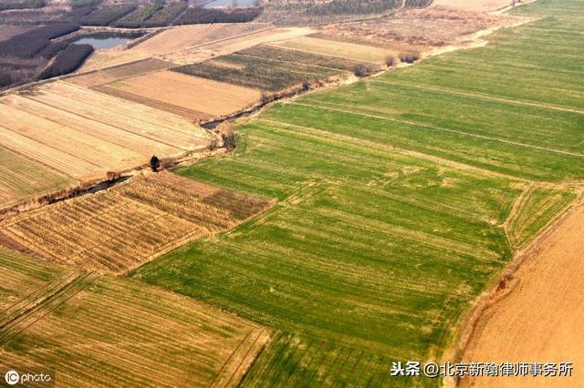 对于村委会能否随意处理农村集体土地,及土地承包相关问题