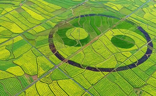 """""""三块地""""改革提速 农地入市规则有望明确"""
