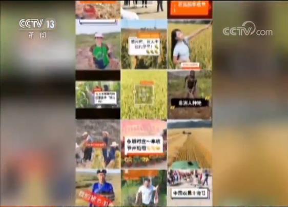 """""""手机成新农具 直播成新农活""""农民网红直播观众超650万人"""