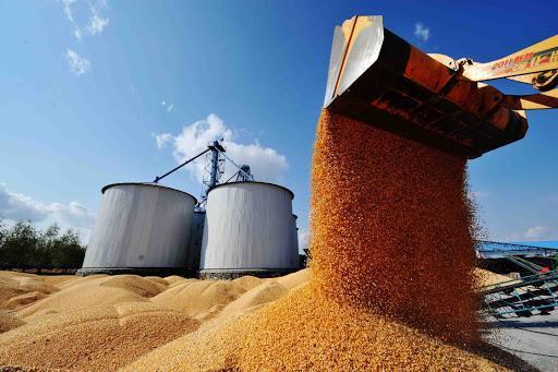粮食会短缺吗?粮价会上涨吗?权威回应来了!