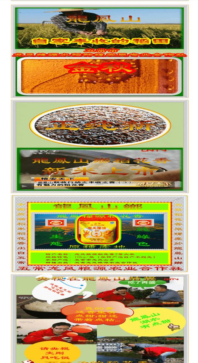 五常市龍鳳粮源水稻种植农民业合作社_五常市农业信息之窗_农业链_副本.png