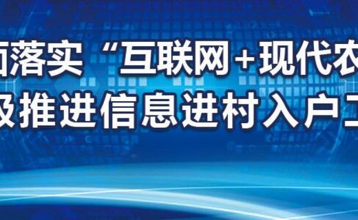 """乡村振兴战略绘制""""三农""""发展新蓝图"""