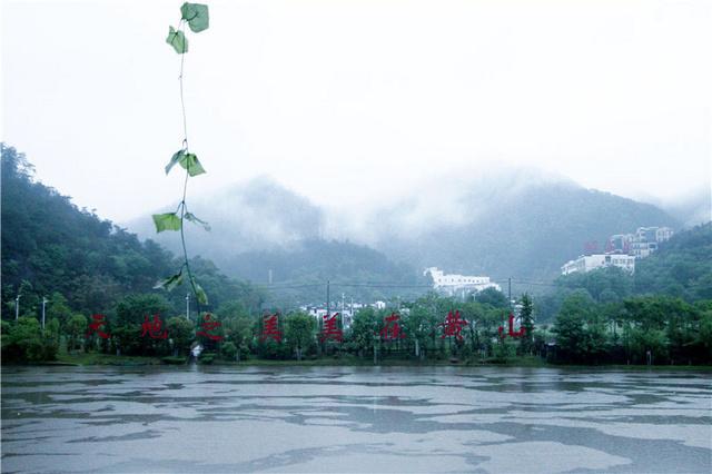 """黄山:绿水青山""""金山银山"""""""