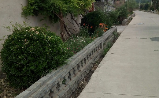 川吴村街头绿化