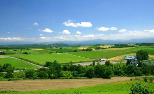 蓝天、白云、绿地、还有你