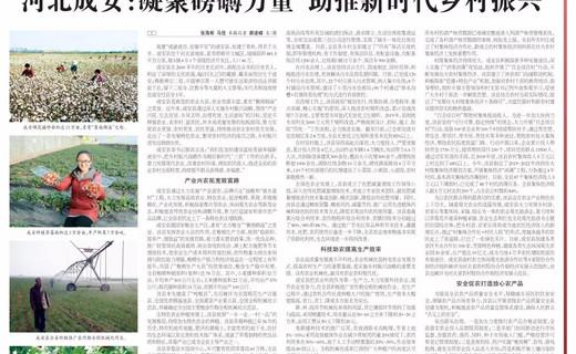 河北成安:凝聚磅礴力量 助推新时代乡村振兴